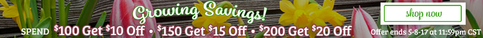Spring Savings! $20 OFF