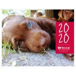 Revival Animal Health Calendar