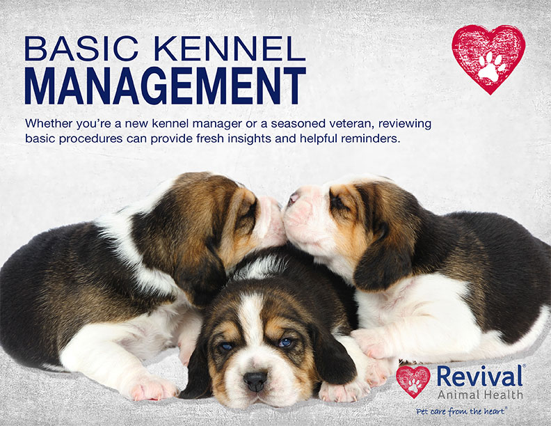 Basic Kennel Management Guide