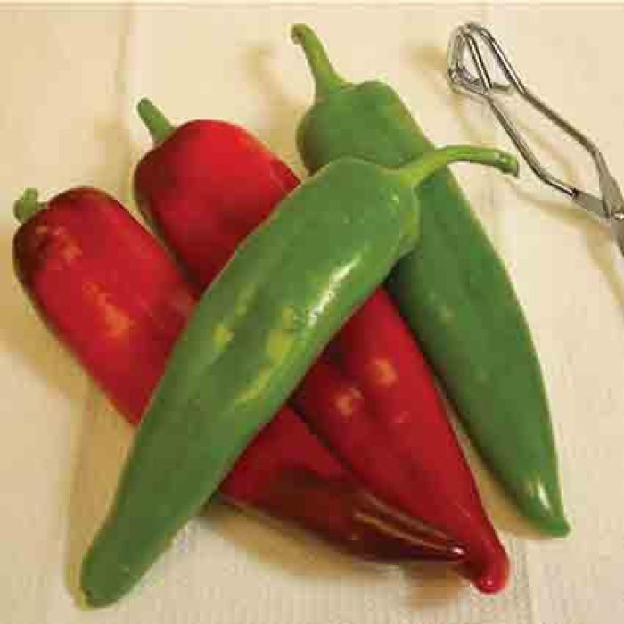Biggie Chile Pepper