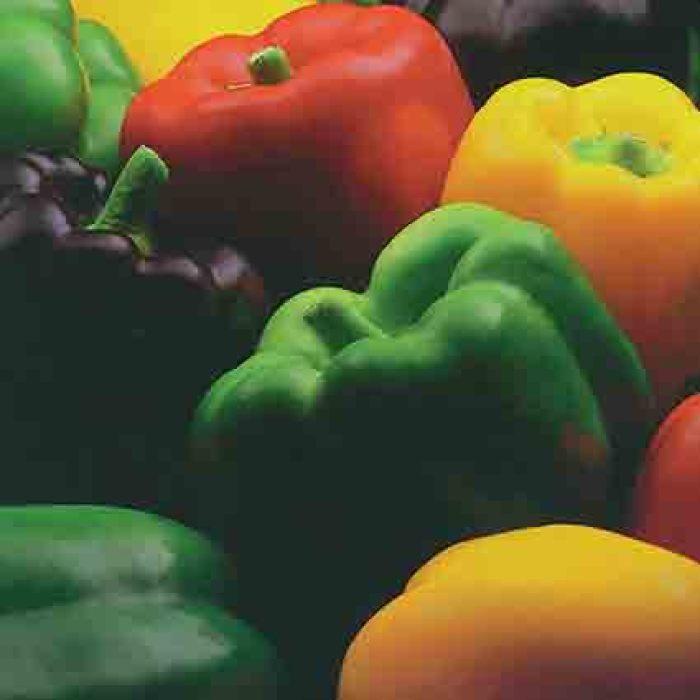 Sweet Pepper Gourmet Rainbow Mix
