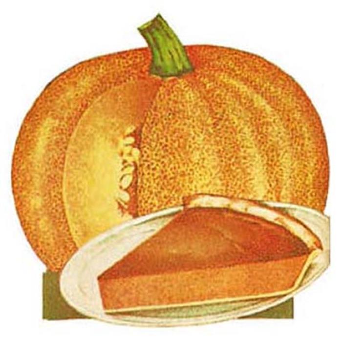 Small Sugar Or Pie Pumpkin