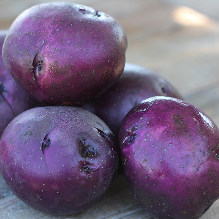 Huckleberry Gold Potato