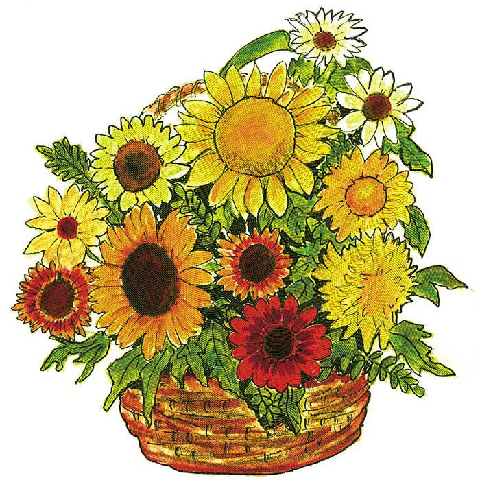 Antique Sunflower Mix
