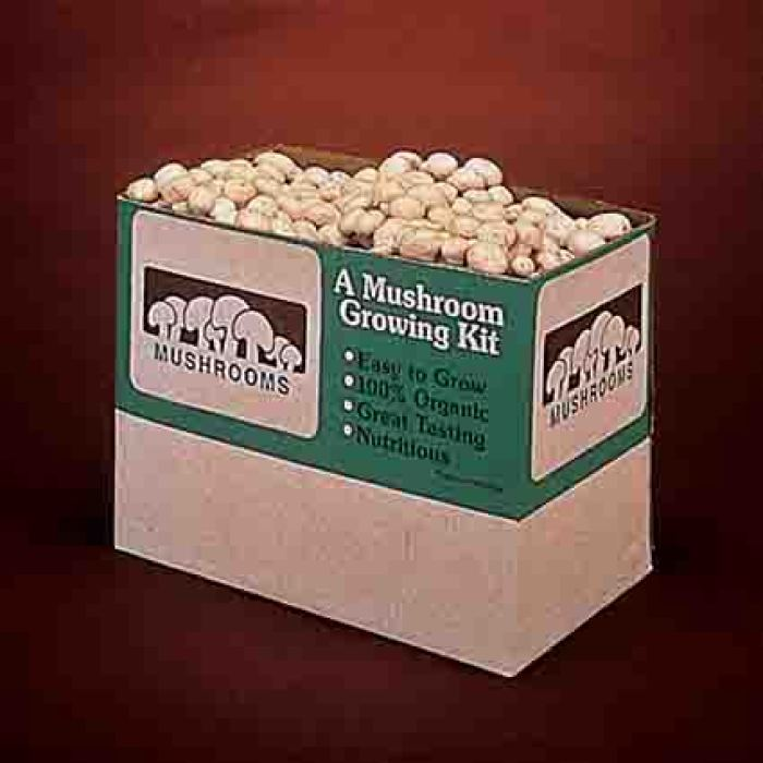 White Button Mushrooms 12 Pound Kit