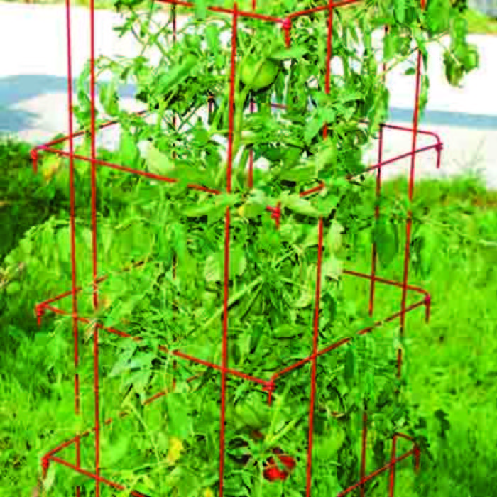 Red Jumbo Tomato Cages 2 Count