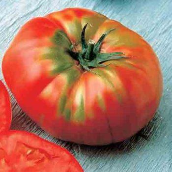 Brandywine Tomato