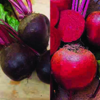 Beet Lovers Special