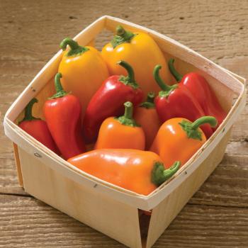 Lunchbox Mix Pepper