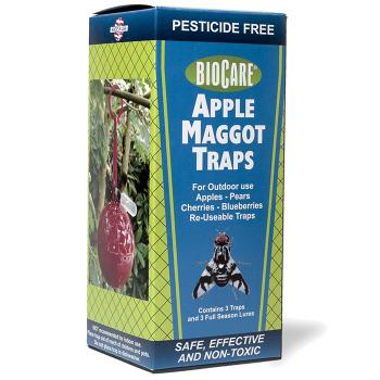 Apple Maggot Trap