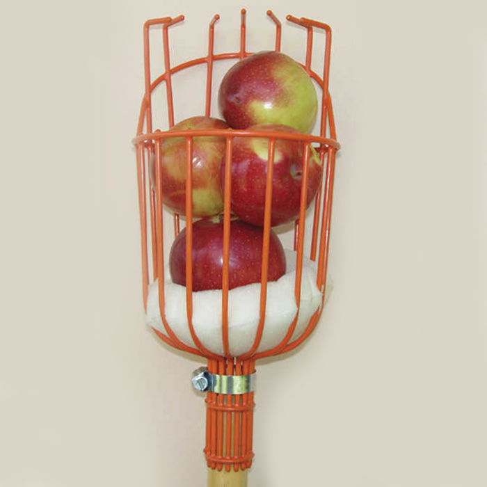 Fruit Picker With Pole