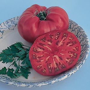 Heirloom Vegetable Plants