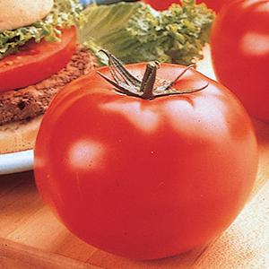 Slicer Tomatoes
