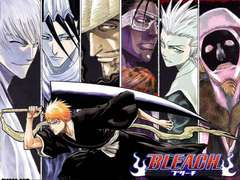Bleach Fanatics Group