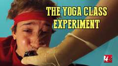 The Yoga Experiment