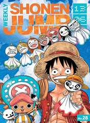 One Piece Group