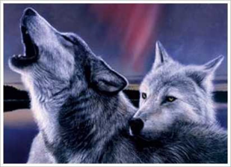Картинка с волком и поздравлением, своими