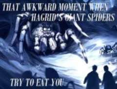 That Awkward Moment When Hagrid's Giant Spiders Try to Eat You