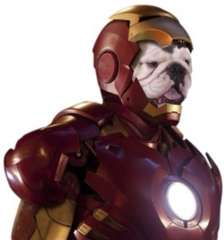 ironpuppy12