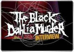 the black dalia murder