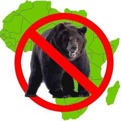 There are No Bears in Africa.