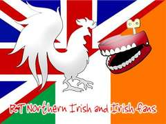 Northern Irish and Irish fans