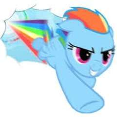 Rainbow Dash is the best pony