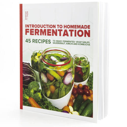 Homemade Fermentation Book by Mortier Pilon
