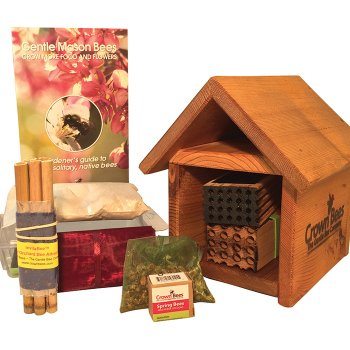 Bee Works Cabin Kit