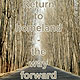 Return to homeland - the way forward