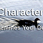 Character - It determines your Destiny