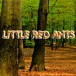 LIttle Red Ants on the hill