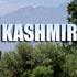 Only Panun Kashmir