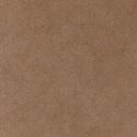 3888 - Desert Camel