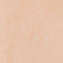 3911 - Nude