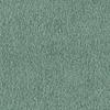 4397 - Eucalyptus