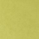 4488 - Lime