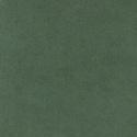 4658 - Bottle Green