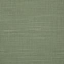 4896 - Silica Sage