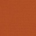 54010 - Canvas Rust