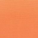5406 - Canvas Tangerine