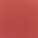 5407 - Canvas Henna