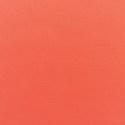 5415 - Canvas Melon