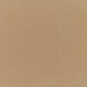 5425 - Canvas Cocoa