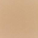 5468 - Canvas Camel