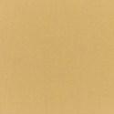 5484 - Canvas Brass