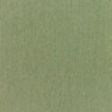 5487 - Canvas Fern