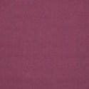 57002 - Canvas Iris