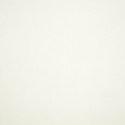 57003 - Canvas White