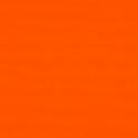 6009 - Orange